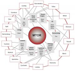 The MTOR Clinical Interactome