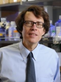 Dr Lionel Ivashkiv