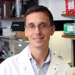 Dr. Brad Jones