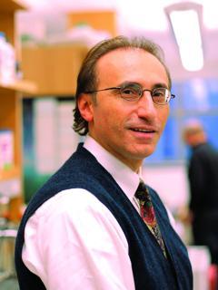 Dr. Shahin Rafii