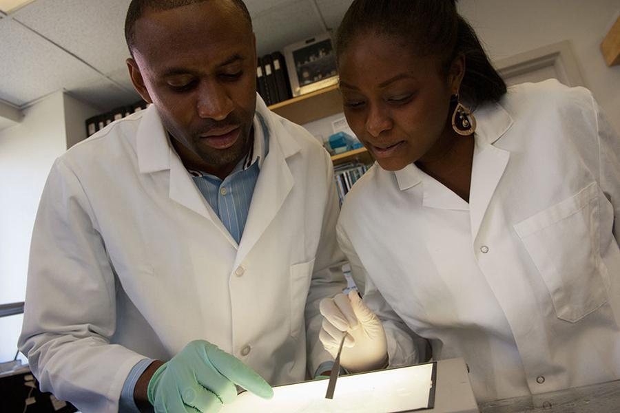 Weill Cornell Medicine Diversity